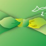 山田繊維株式会社「むす美」